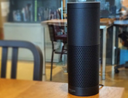 Amazon Drops Alexa First Amendment Defense In Murder Case After Defendant Agrees To Share Echo Data