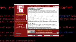 Cyber-attack: Europol says it was unprecedented in scale