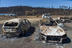 Google's Waze Navigation Rerouting AI Directed Drivers Into The Fiery Hell Of California Wildfires