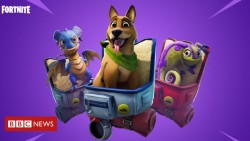 Fortnite pets not money-making exercise, expert believes