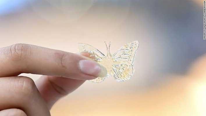 3d butterfly oil