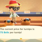 How To Maximize Animal Crossing New Horizons Turnip Profits With A Few Key Stalk Market Tools