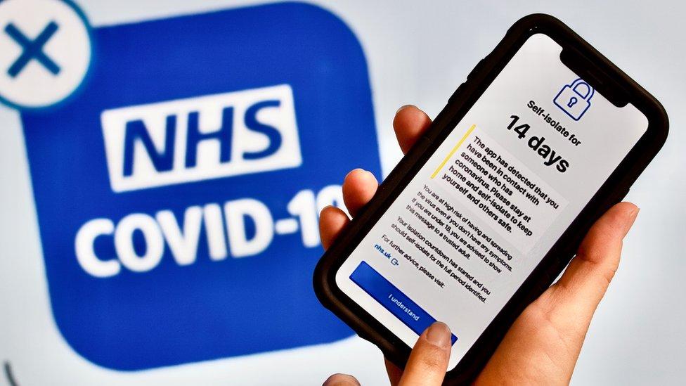 NHS Covid-10 app